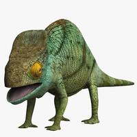 3d chameleon lizard model