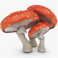 3d mushrooms amanita model