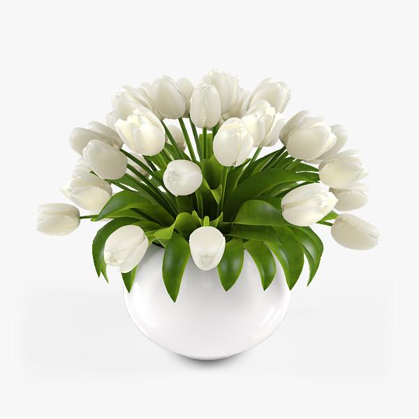 pr_tulips_vase2_2_1.jpg