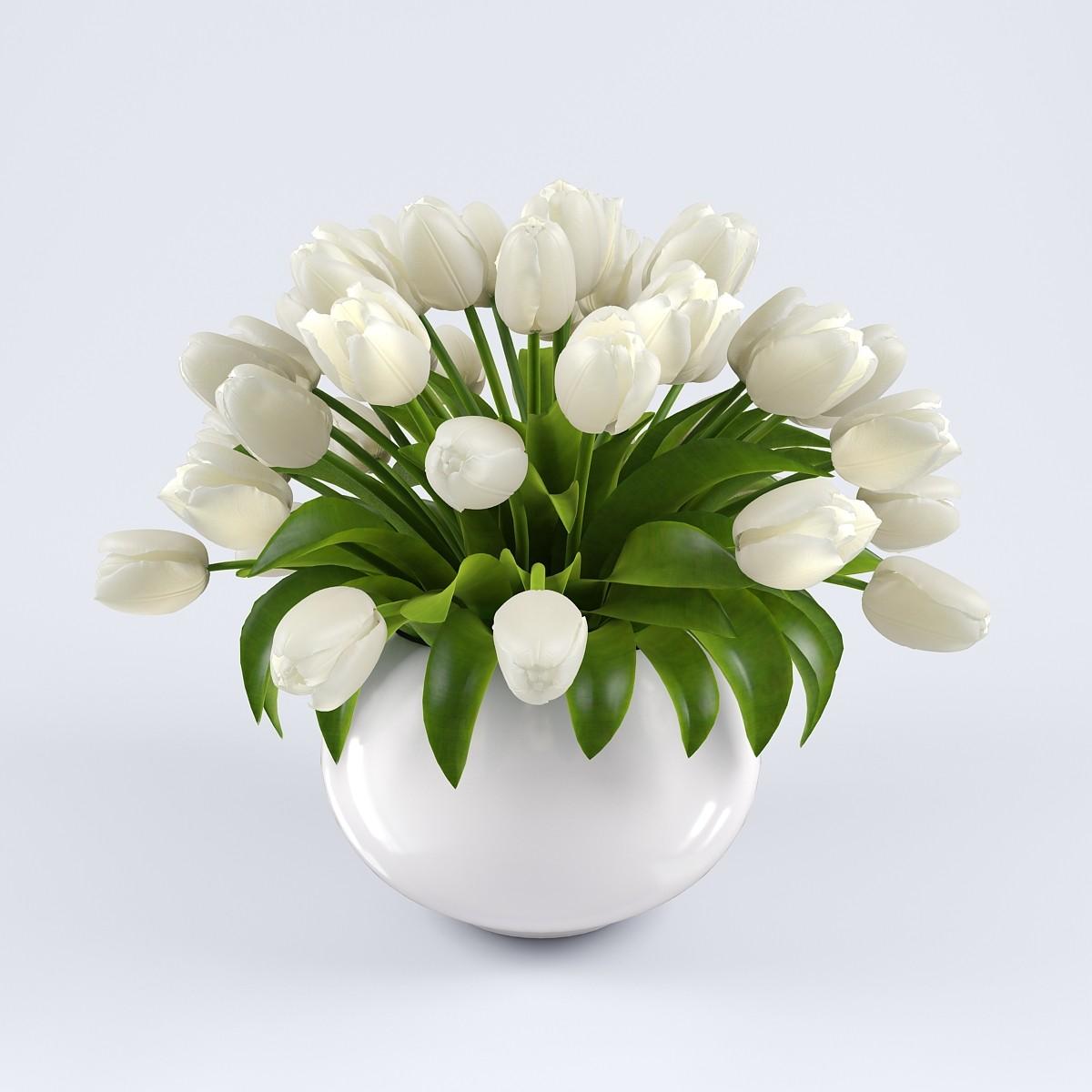 pr_tulips_vase2_2_3.jpg