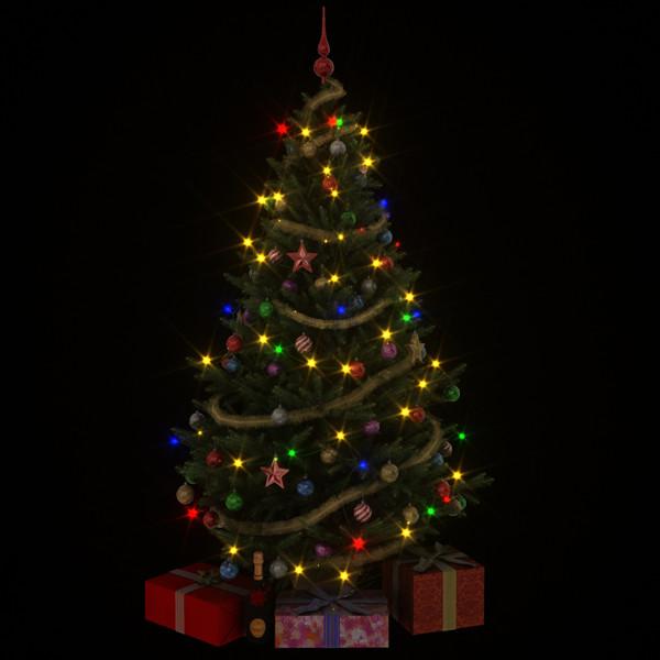 albero01_.jpg