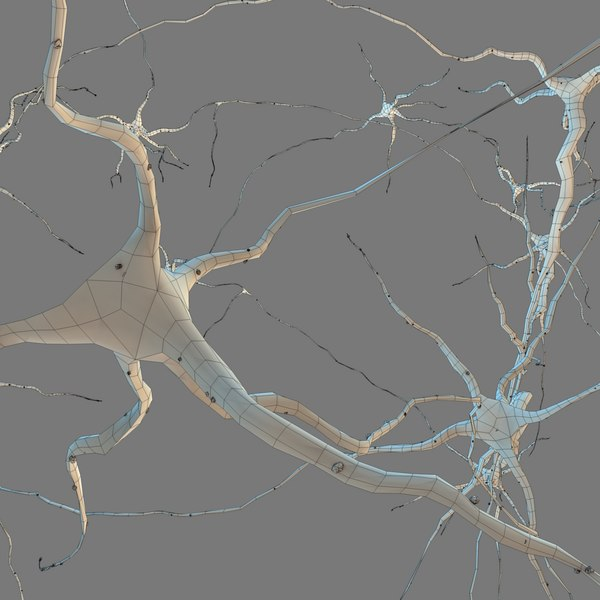 neurons glial cells c4d - Neurons... by 3D Standard