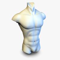 zbrush ready male torso 3d model