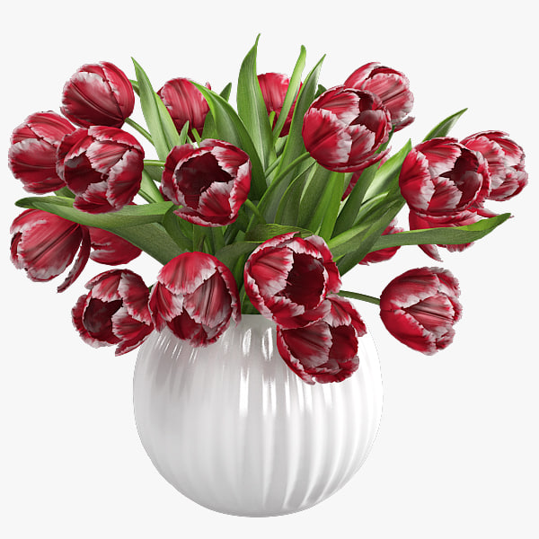 floatingtulips copy.jpg