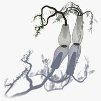 modern vases trees 3d model