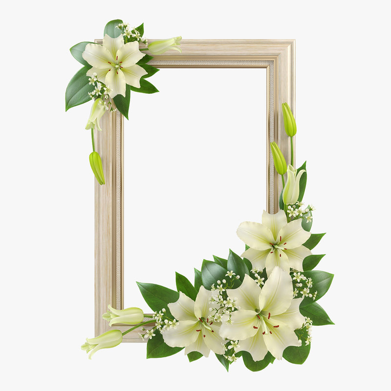 pr_lily_frame1_1.jpg