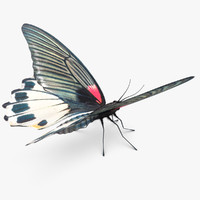 3ds max mormon butterfly pose 2