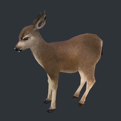 3d model deer fawn - Real Time Textured Deer Fawn... by web3Dservice