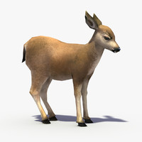 Real Time Textured Deer Fawn