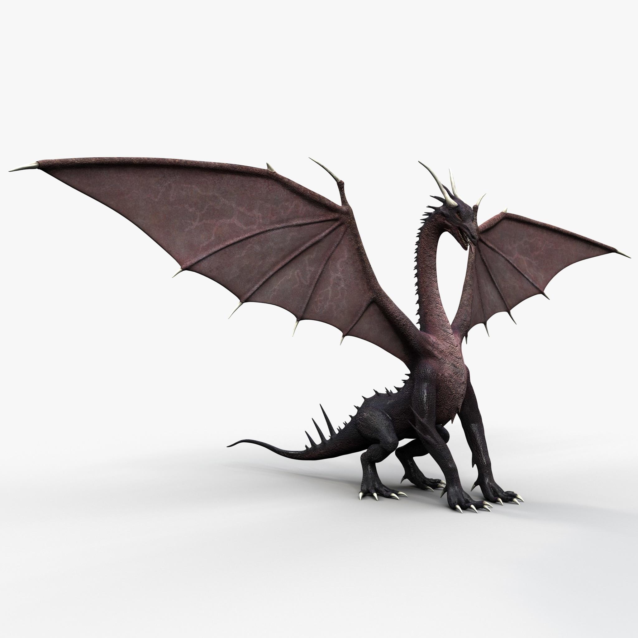 Dragon 3_2.jpg