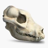Dog Skull 2