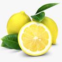 lemon 3D models
