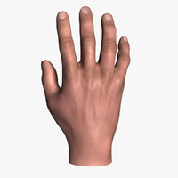 3ds max realistic male hand