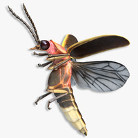FireFly Bug Flying Pose