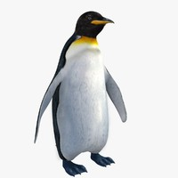 3ds penguin