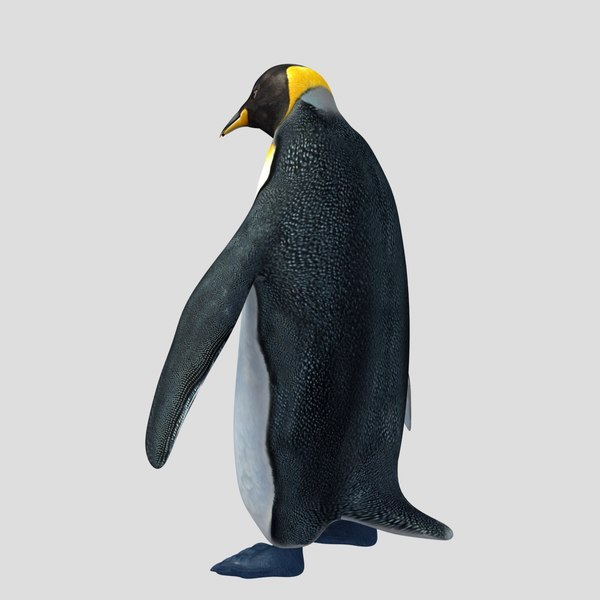 3ds penguin - Penguin... by ergin3d