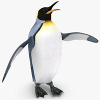 3d king penguin rigged