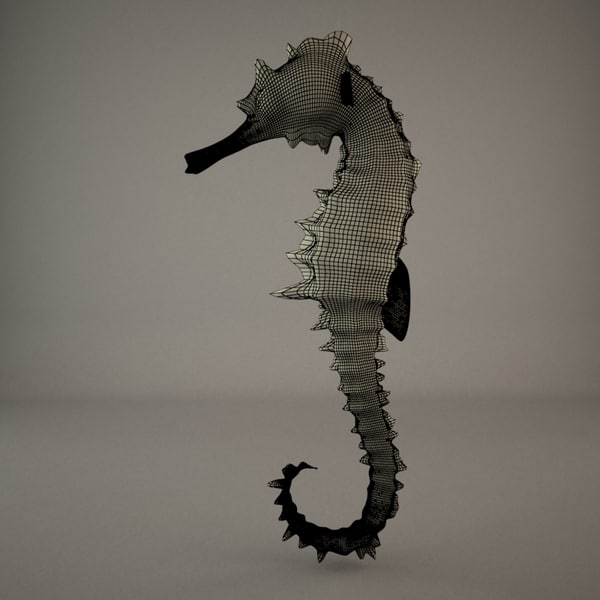 sea horse max - Sea Horse... by JS 3D
