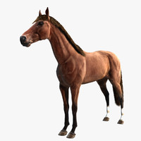 3d model thoroughbred horse rig