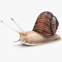 3ds snail