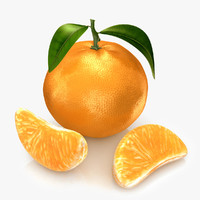 mandarine modeled 3d c4d
