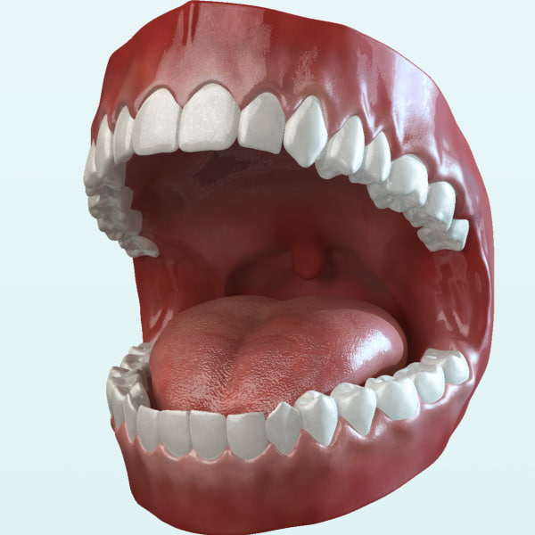 Mouth Animated 2.0