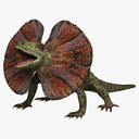 Frilled Lizard 3D models
