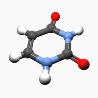 DNA - Uracil Nucleobase