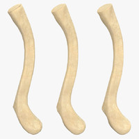 3d clavicle bone