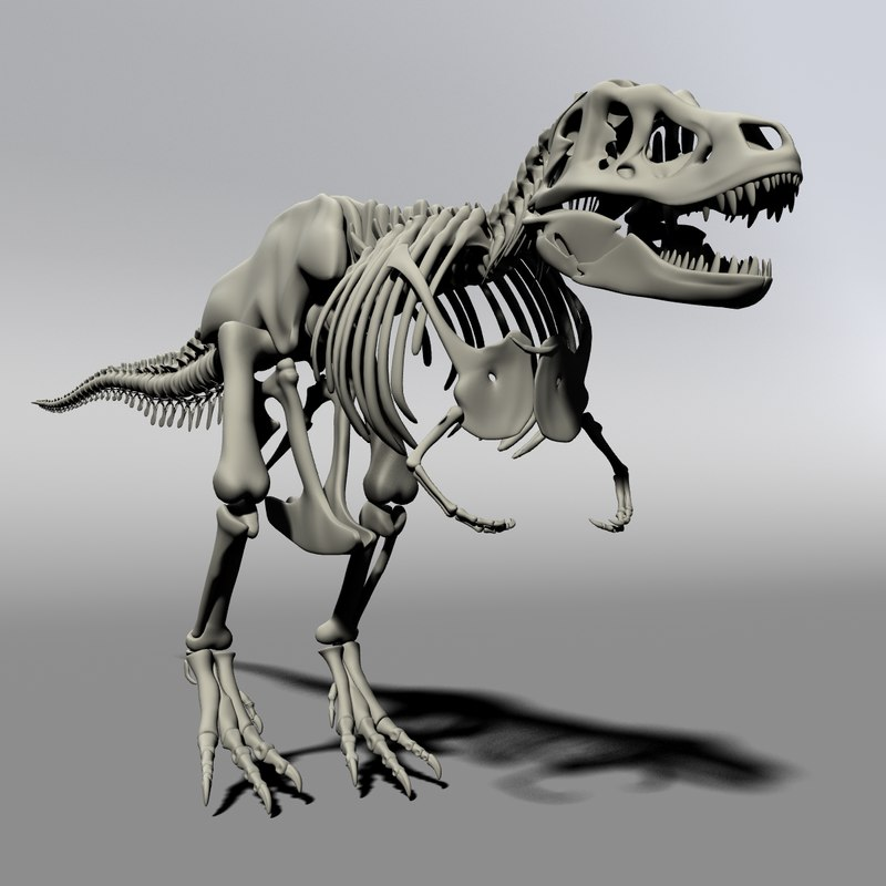 T_Rex_preview_001.png