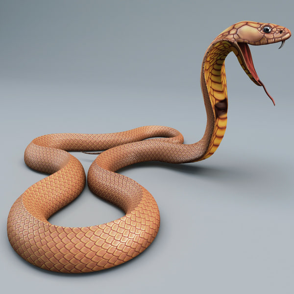 3d model snake cobra pose 4 - Snake Cobra Pose 4... by 3d_molier