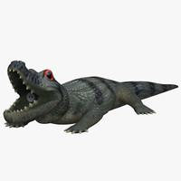 crocodil 3d model