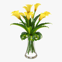 Calla flower in vase 1