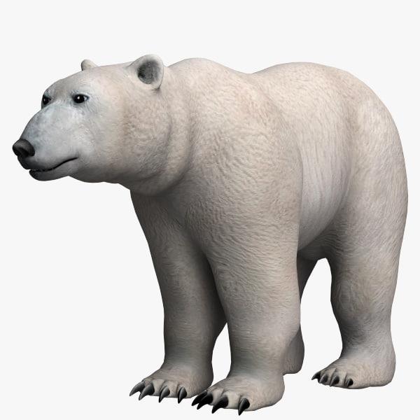 polar_bear_01.jpg