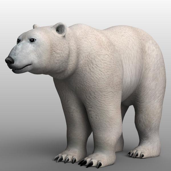 polar_bear_02.jpg