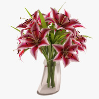 max beautiful lily flower pink