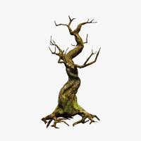 crooked mossy tree 3d model