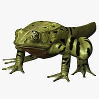 maya frog metamorph