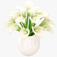 3d model beautiful white flowers bouquet