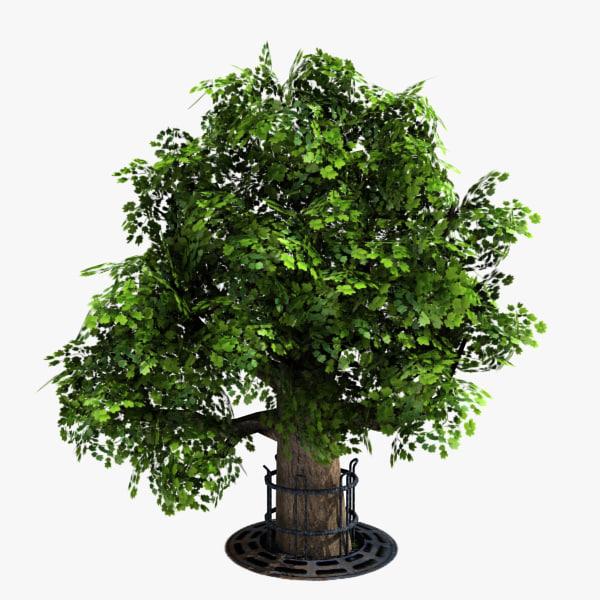 Tree_03_img01.jpg