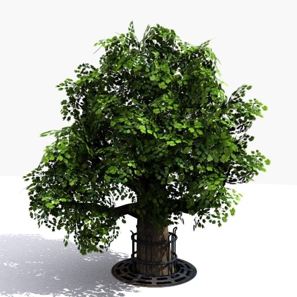 Tree_03_img02.jpg