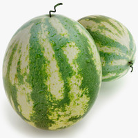 3d model watermelon games ready