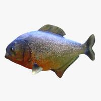 3d piranha fish
