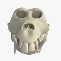 skeleton monkey 3d max