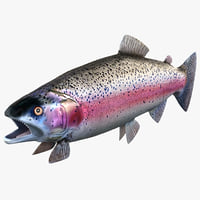 rainbow trout 3ds
