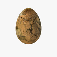 Fossilized Egg