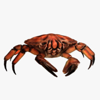 crab rigged 3d obj