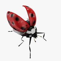 3ds ladybug modelled