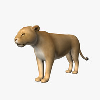 maya female lion