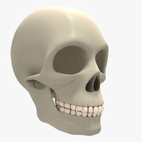 obj basic skull cranium